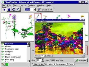 Free Digital 3d Art Software 3d Illustration Modelling