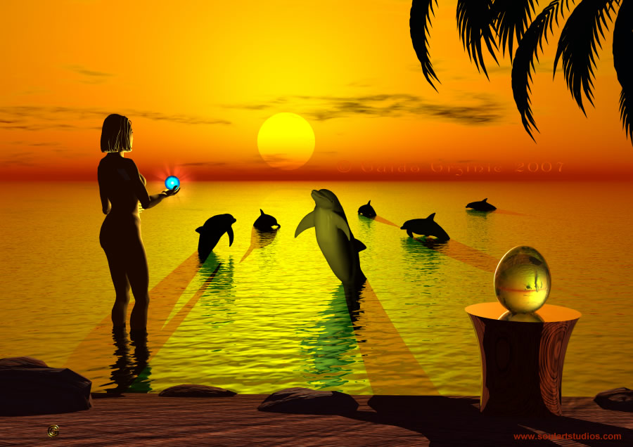 wallpaper Dolphin Sunset
